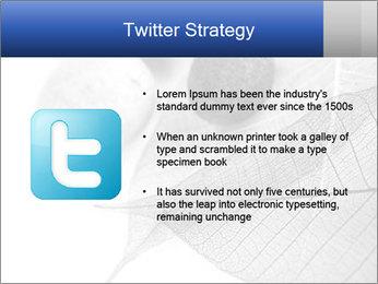 Zen stones PowerPoint Templates - Slide 9