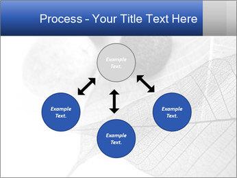 Zen stones PowerPoint Templates - Slide 91