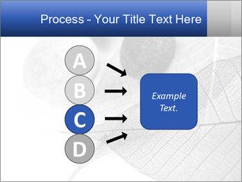 Zen stones PowerPoint Templates - Slide 94