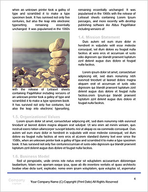 0000091652 Word Template - Page 4