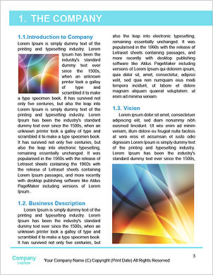 0000091653 Word Template - Page 3