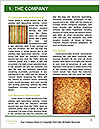 0000091660 Word Template - Page 3