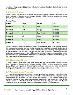 0000091660 Word Template - Page 9