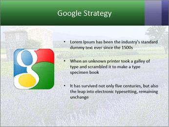 Nice lavender PowerPoint Template - Slide 10