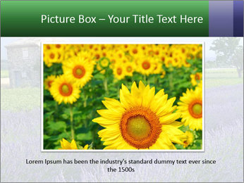 Nice lavender PowerPoint Template - Slide 15