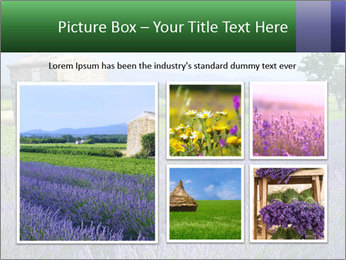 Nice lavender PowerPoint Template - Slide 19