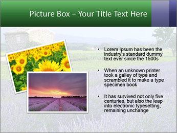 Nice lavender PowerPoint Template - Slide 20