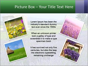 Nice lavender PowerPoint Template - Slide 24