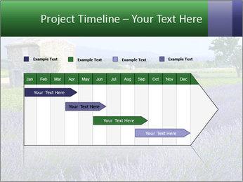 Nice lavender PowerPoint Template - Slide 25