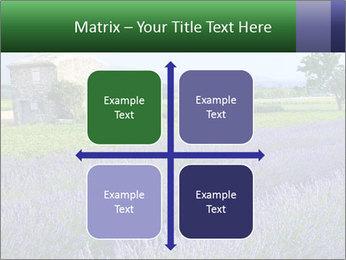 Nice lavender PowerPoint Template - Slide 37