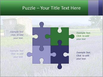 Nice lavender PowerPoint Template - Slide 43