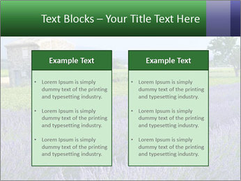 Nice lavender PowerPoint Template - Slide 57
