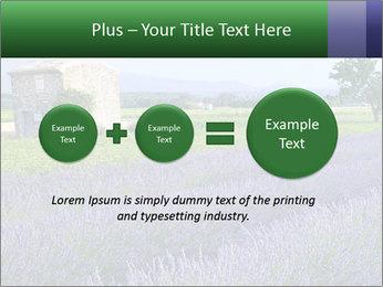 Nice lavender PowerPoint Template - Slide 75