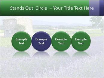 Nice lavender PowerPoint Template - Slide 76