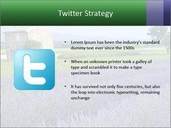 Nice lavender PowerPoint Template - Slide 9