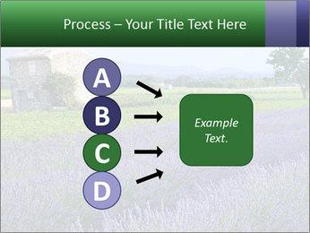 Nice lavender PowerPoint Template - Slide 94