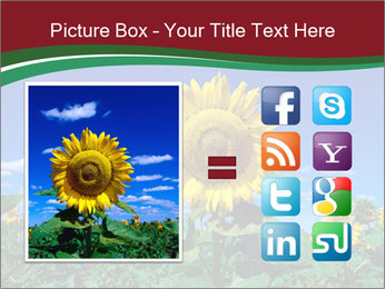 Sunflowers PowerPoint Template - Slide 21