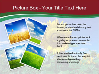 Sunflowers PowerPoint Template - Slide 23