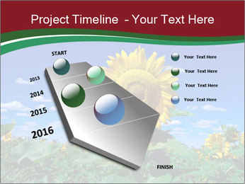 Sunflowers PowerPoint Template - Slide 26