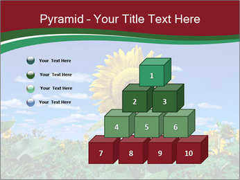 Sunflowers PowerPoint Template - Slide 31