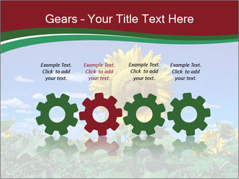 Sunflowers PowerPoint Template - Slide 48