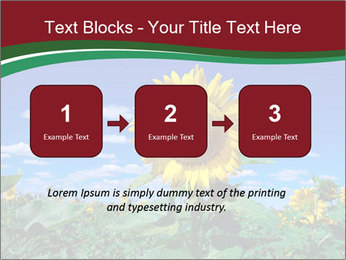 Sunflowers PowerPoint Template - Slide 71