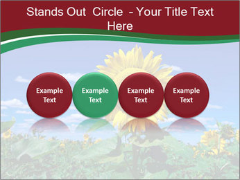 Sunflowers PowerPoint Template - Slide 76