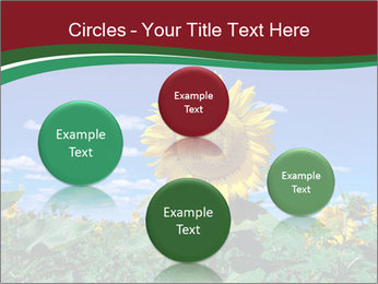 Sunflowers PowerPoint Template - Slide 77