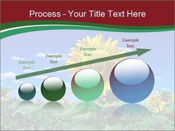 Sunflowers PowerPoint Template - Slide 87