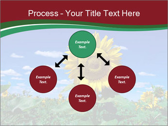Sunflowers PowerPoint Template - Slide 91