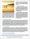 0000091671 Word Template - Page 4