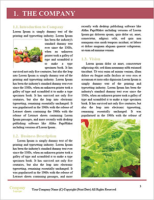 0000091673 Word Template - Page 3