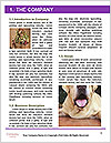 0000091675 Word Template - Page 3