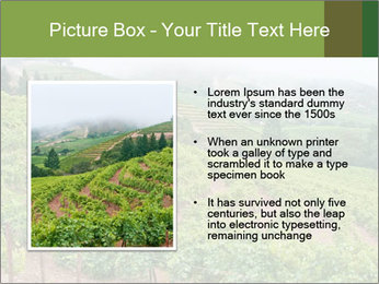 Panoramic shot PowerPoint Template - Slide 13