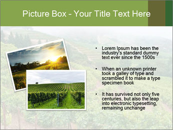 Panoramic shot PowerPoint Template - Slide 20