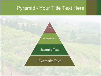Panoramic shot PowerPoint Template - Slide 30