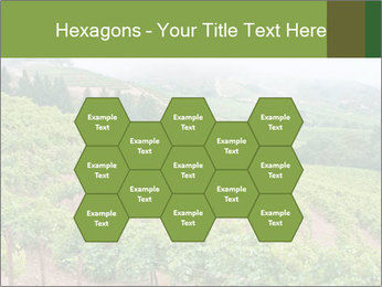 Panoramic shot PowerPoint Template - Slide 44