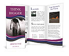 0000091682 Brochure Template