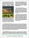 0000091683 Word Template - Page 4