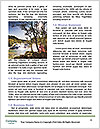 0000091684 Word Template - Page 4