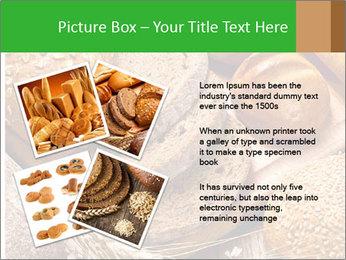 Assortment PowerPoint Template - Slide 23
