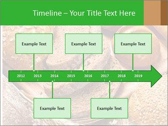 Assortment PowerPoint Template - Slide 28