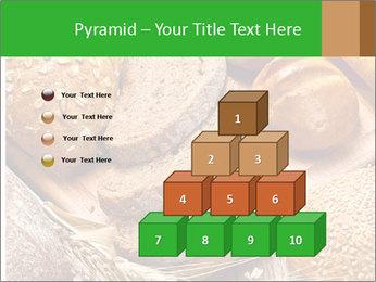 Assortment PowerPoint Template - Slide 31