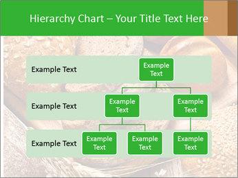 Assortment PowerPoint Template - Slide 67
