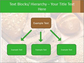 Assortment PowerPoint Template - Slide 69