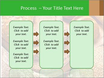 Assortment PowerPoint Template - Slide 86