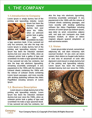0000091686 Word Template - Page 3
