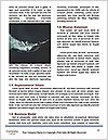 0000091689 Word Templates - Page 4
