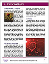 0000091692 Word Template - Page 3