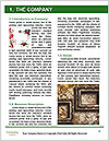 0000091696 Word Template - Page 3